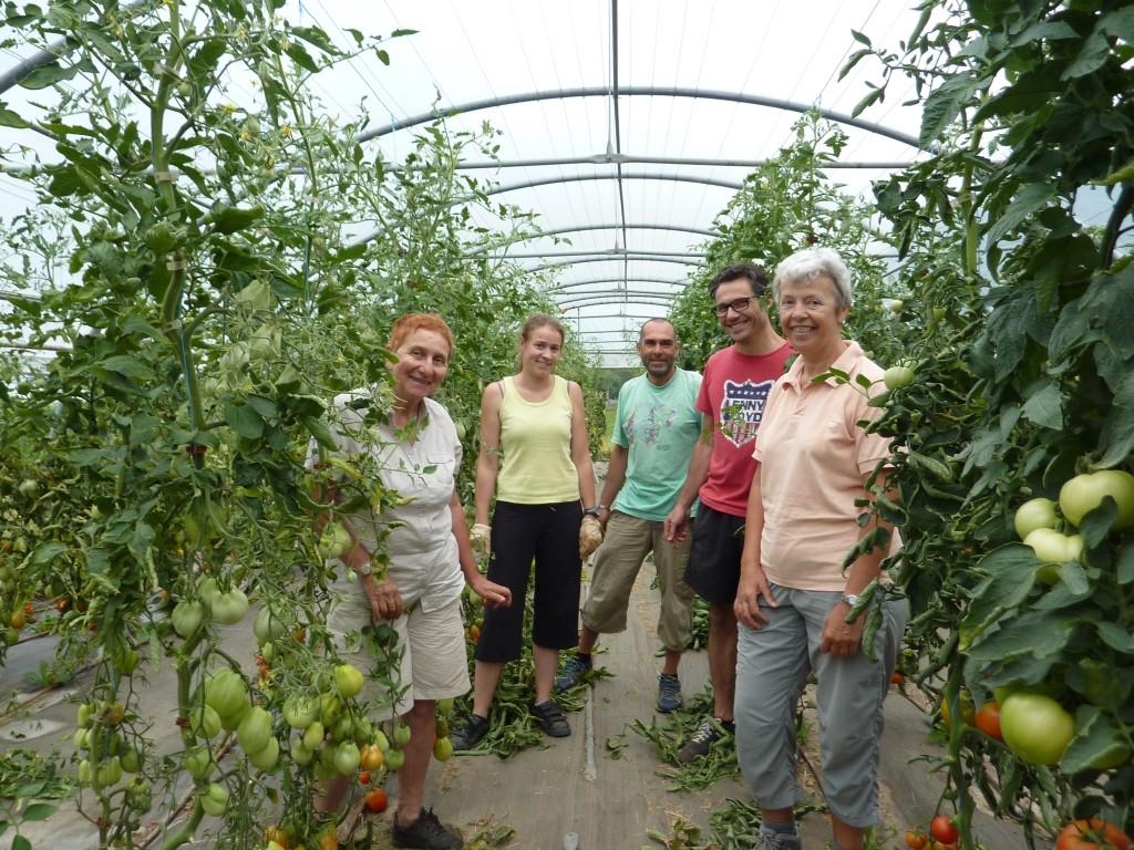 Une partie des participants à l'aide au jardin, dont Reine (à gauche sur la photo), Présidente des Paniers du Crozet.
